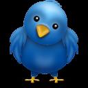 Che cos'è Twitter